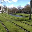 A photograph of a green tram tracks in Rotterdam, the Netherlands