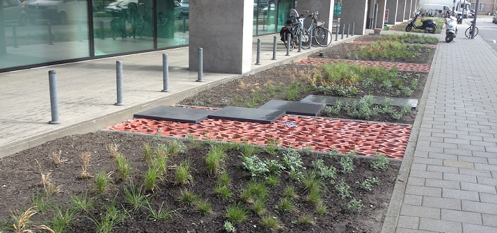 8. Permeable paving and greenspace in Rotterdam